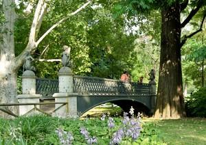 Nel cuore del parco
