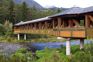 Un ponte sul verde
