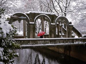Un ombrello rosso sotto la neve