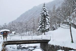 Sommersi dalla neve