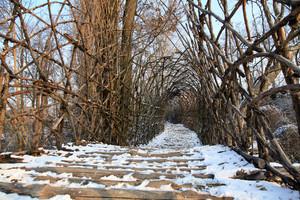 ponte San vigilio