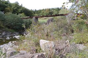 il ponte della nonna