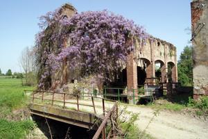 Ponte sulla roggia del vecchio mulino
