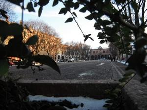 La piazza .. dal vaso dello ZTL
