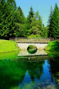 Immerso nel verde