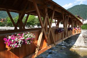 Ponte di legno pedonale