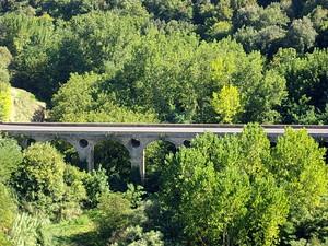 un ponte in mezzo al verde