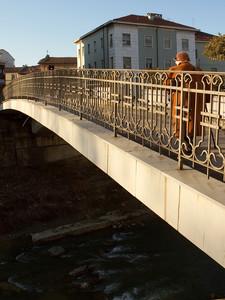 nizza e il suo ponte