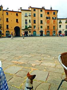 Uno sguardo alla piazza…