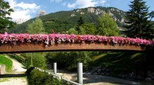 un ponticino con tanti fiori
