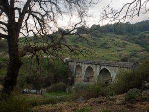 Il Ponte prima di arrivare a Samo