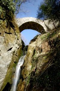 Ponte Pruno