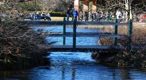 Ponte in legno e metallo sul laghetto artificiale