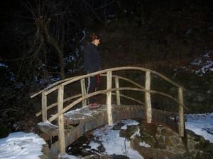 Ponte in legno fraz. Breglia