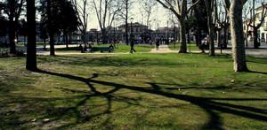 Primavera in Piazza Roma