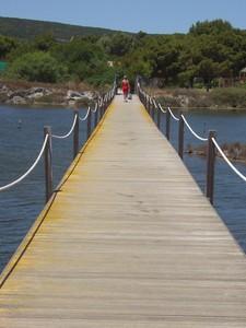 Sopra la laguna di Porto Pino