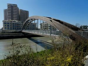 Il ponte del Green Leaves