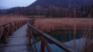 cammino verso l'oasi