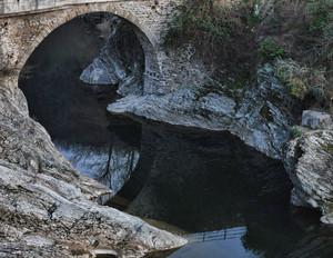 il ponte e i suoi peliti..