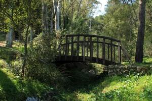 Il ponte del parco naturale