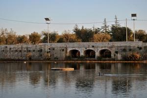 Un piccolo ponte..per un piccolo lago..(Lago di Sassano)
