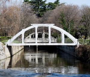 Ponte del parco.