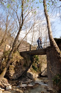 Ponte della Cerreta – SP31