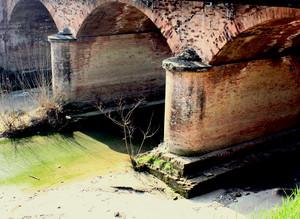Vecchio ponte sul Tresinaro