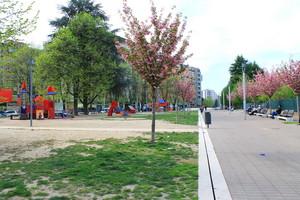 Piazza talia