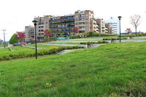 Piazza Norberto Bobbio
