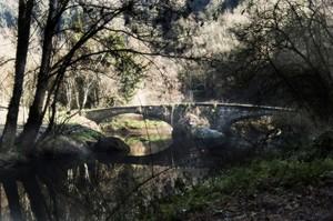 Ponte sul Treja