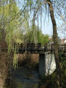 il ponte del Parco Tapparelli