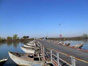 Ponte di barche verso Gorino