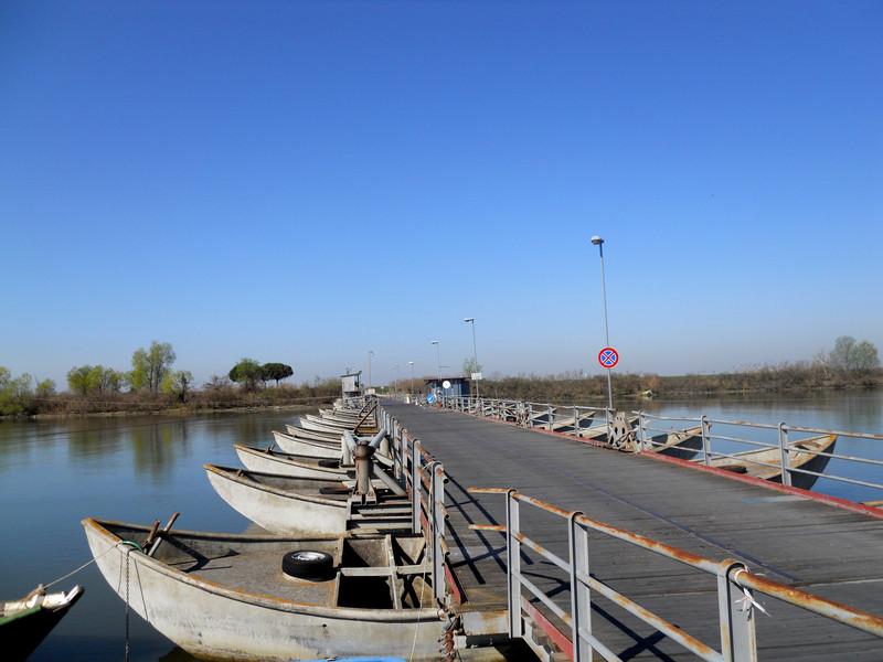 ''Ponte di barche verso Gorino'' - Goro
