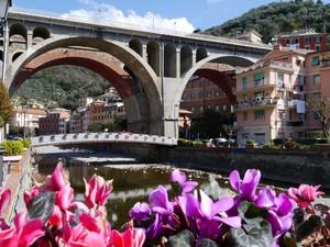 Il ponte che attraversa…