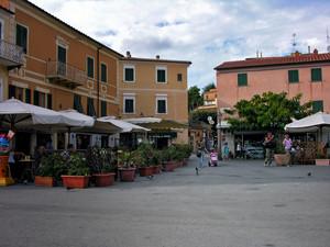 Piccioni in Piazza Matteotti