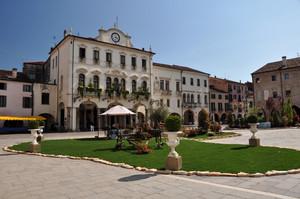 Piazza Maggiore in fiore