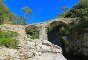 Ponte sul Roya