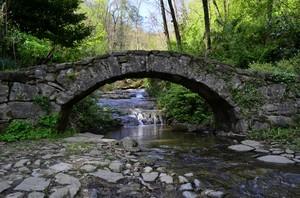 ponte bordea'