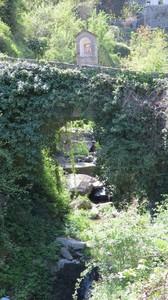 Ponte ricoperto dalla vegetazione primaverile