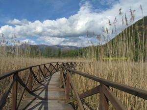 oasi naturalistica