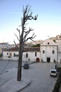 Piazza San Francesco con l'omonimo convento e il leggendario pigno