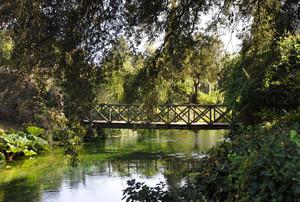 Ponte nel giardino