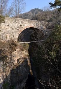 Nei boschi di Castelfondo