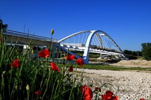 Il Ponte dei Papaveri
