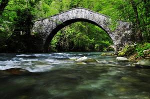 Ponte sulla Turrite