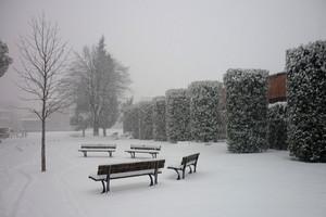 la neve in piazza