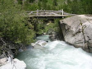 Ponte biodegradabile