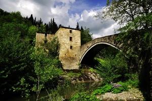 Ponte sul Bidente