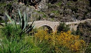 il ponte del Diavolo di Civita immerso nella natura selvaggia